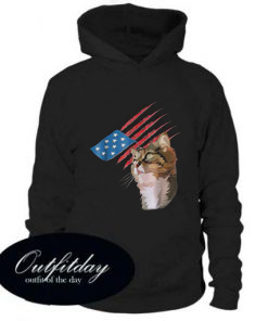 4th Of July Patriotic American Cat Hoodie